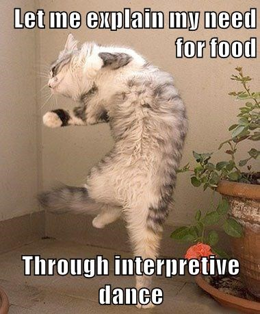 Let me explain my need for food  Through interpretive dance