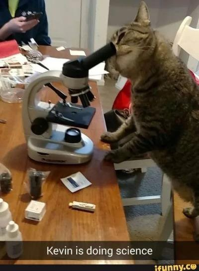 i can has microscope
