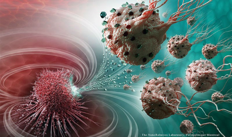 trending science news video nanorobots target cancer