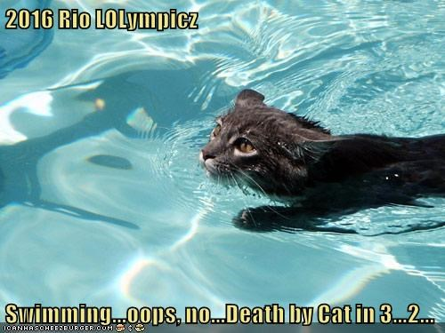 2016 Rio LOLympicz  Swimming...oops, no...Death by Cat in 3...2...