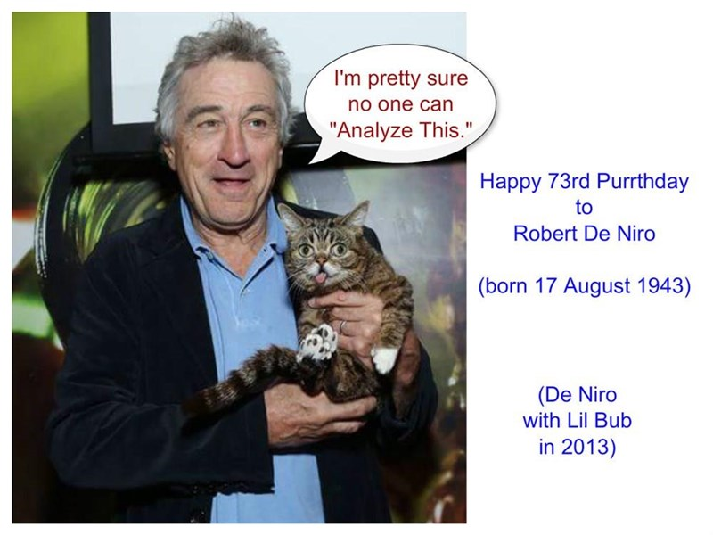 Happy Purrthday, Mr De Niro! (recaption: http://tinyurl.com/hlu2t9v