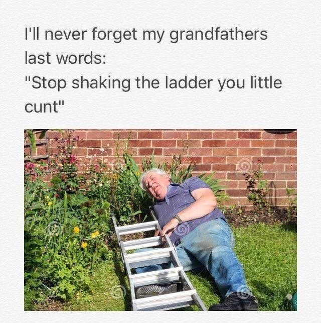ladder parenting Grandpa