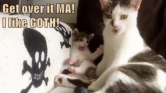 Get over it MA!                                                I like GOTH!