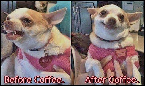 Coffee- The Difference between being a Bitch or a Buddy.