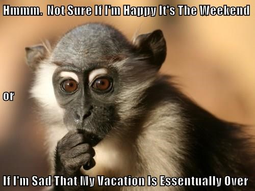 Hmmm.  Not Sure If I'm Happy It's The Weekend or If I'm Sad That My Vacation Is Essentually Over