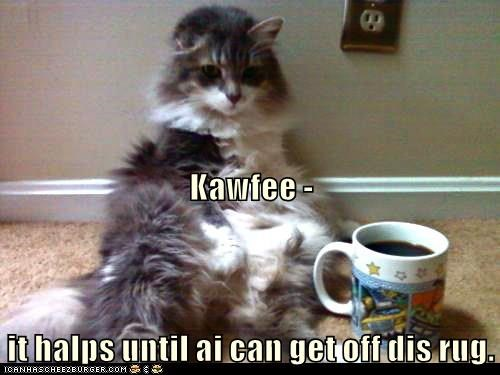 Kawfee -  it halps until ai can get off dis rug.
