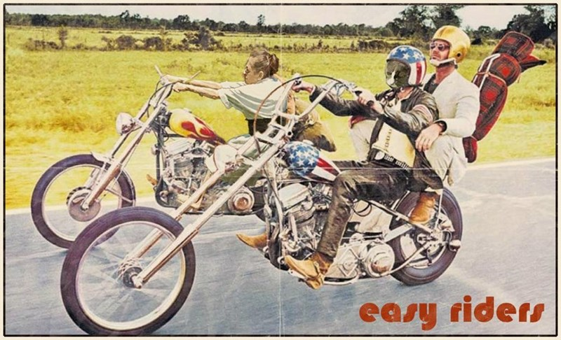 Land vehicle - easy riders
