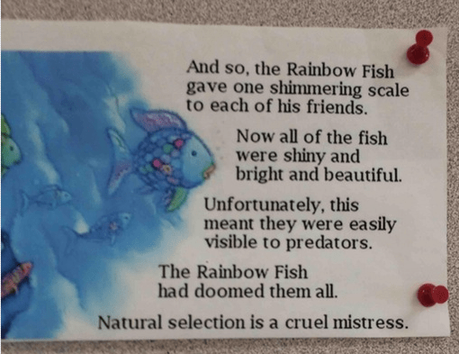 image natural selection kids book Except for Rainbow Fish, Who Was Smart Enough to Eliminate the Competition