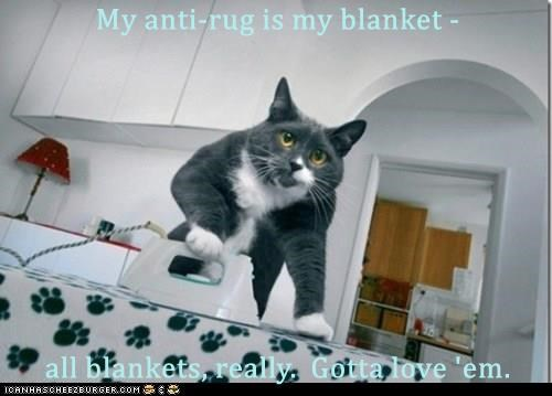 My anti-rug is my blanket -   all blankets, really.  Gotta love 'em.