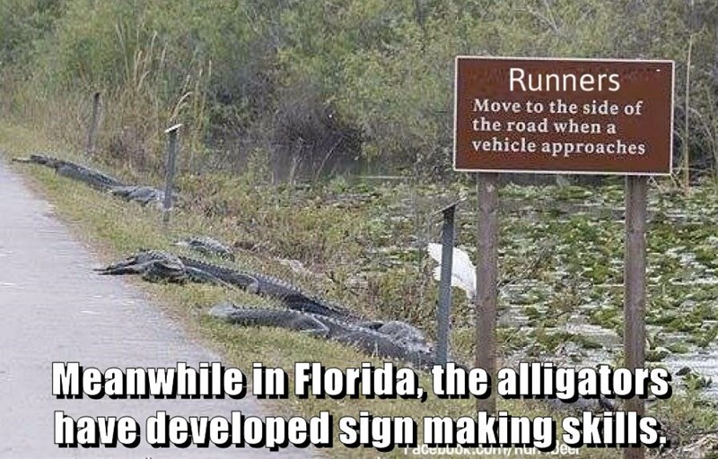 Meanwhile in Florida, the alligators have developed sign making skills.
