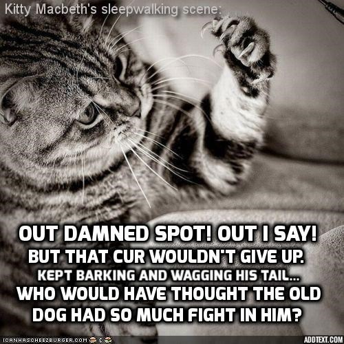 Kitty Macbeth's sleepwalking scene: