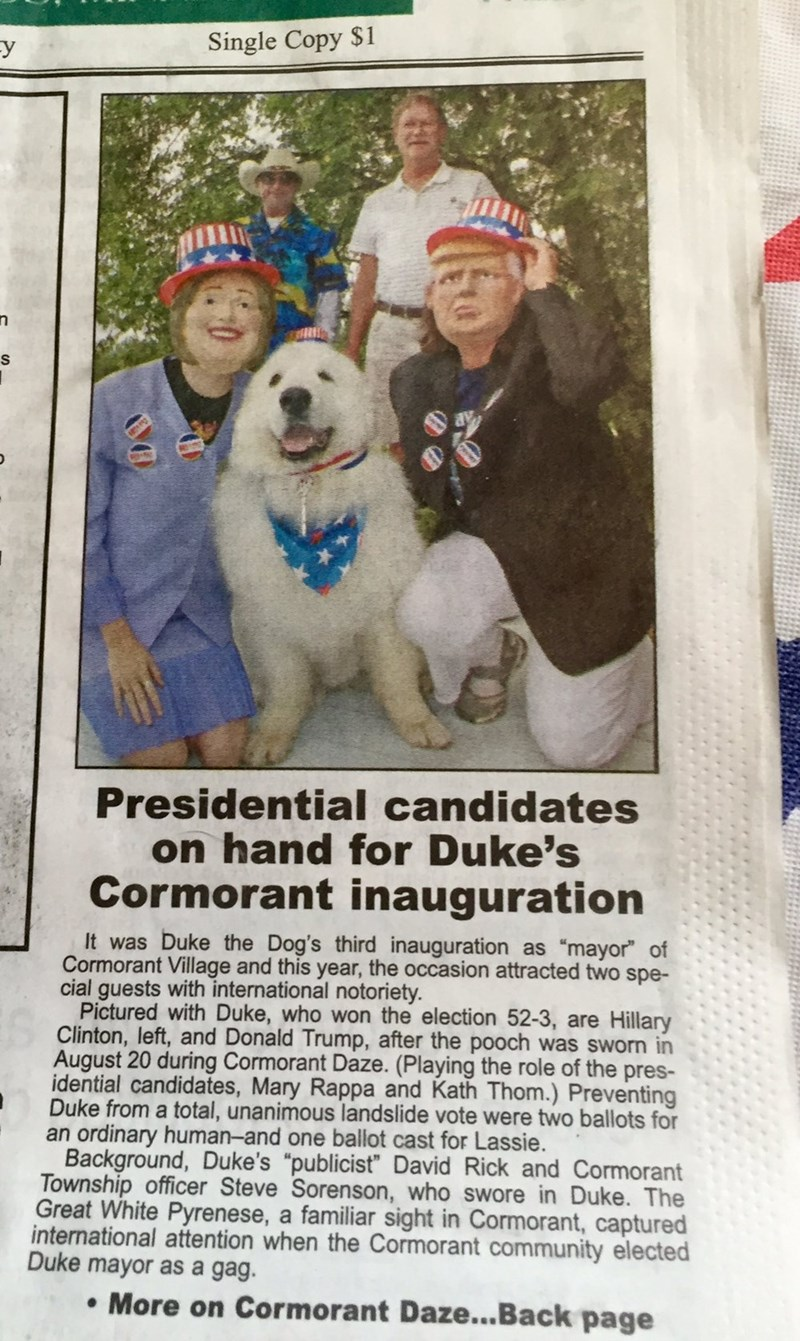 duke the dog re elected as mayor for the third year in a row
