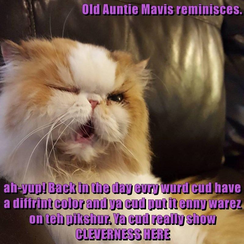 Old Auntie Mavis reminisces.  ah-yup! Back in the day evry wurd cud have a diffrint color and ya cud put it enny warez on teh pikshur. Ya cud really show CLEVERNESS HERE
