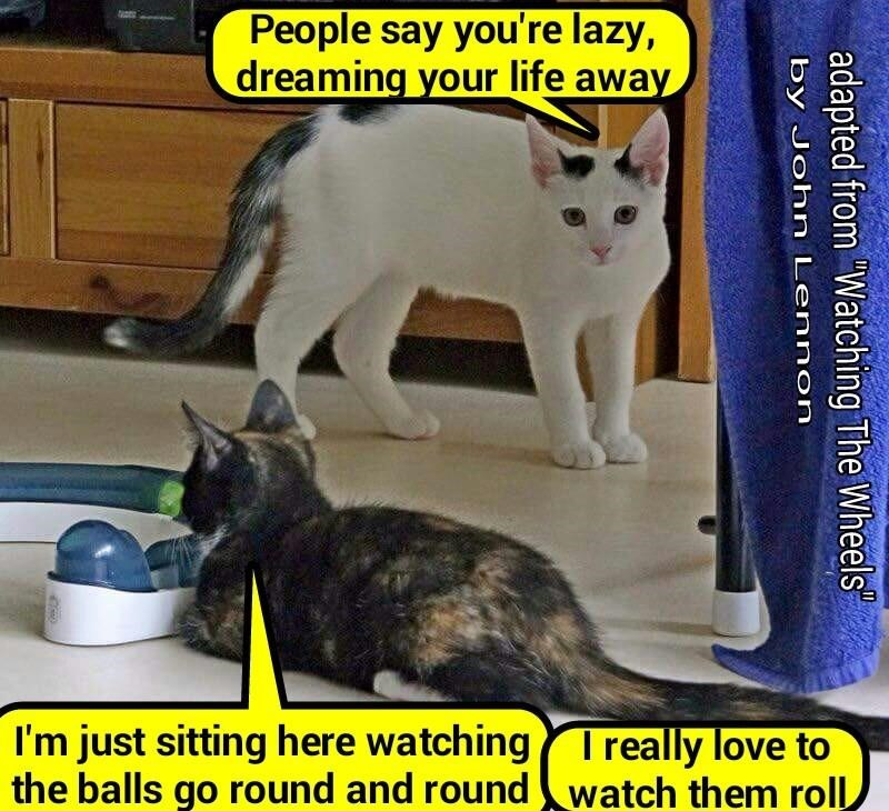"""""""Watching The Balls"""" (adapted from """"Watching The Wheels"""" by John Lennon) (recaption: http://tinyurl.com/hdkagq5"""