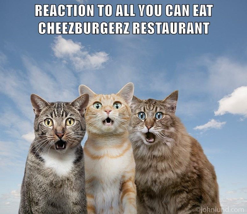 REACTION TO ALL YOU CAN EAT CHEEZBURGERZ RESTAURANT