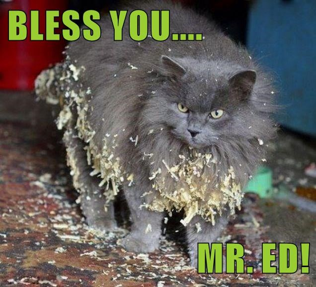 BLESS YOU....  MR. ED!