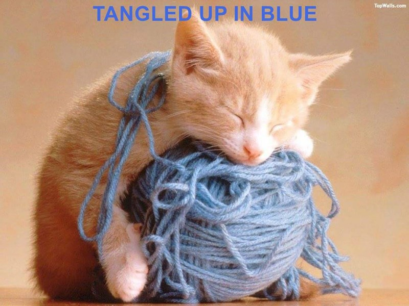 TANGLED UP IN BLUE