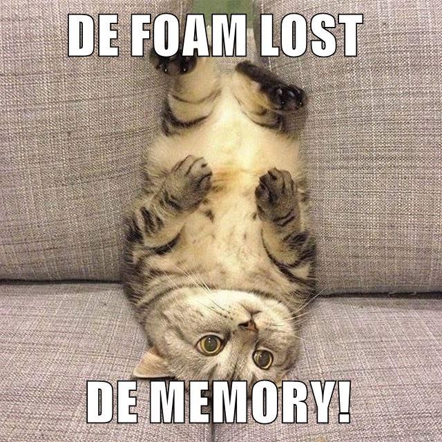 DE FOAM LOST          DE MEMORY!