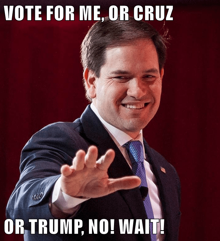 VOTE FOR ME, OR CRUZ  OR TRUMP, NO! WAIT!