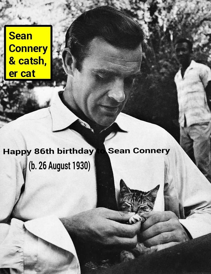 """Sean Cattery (movie still from """"Dr No"""" [1962])"""