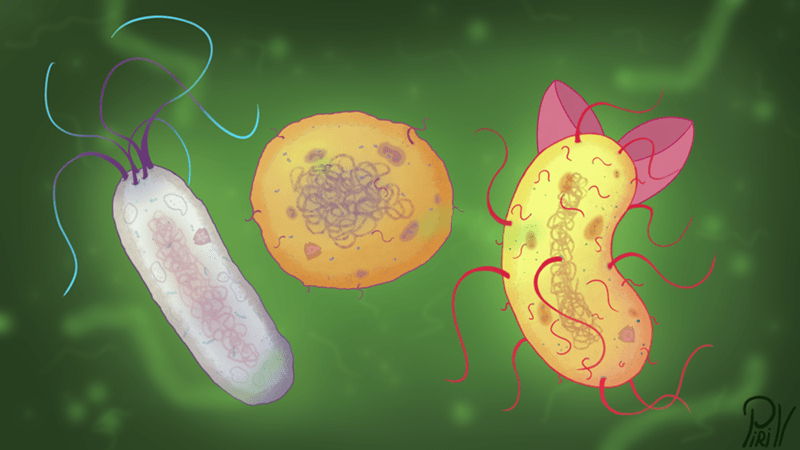 bacteria,Sweetie Belle,apple bloom,Scootaloo