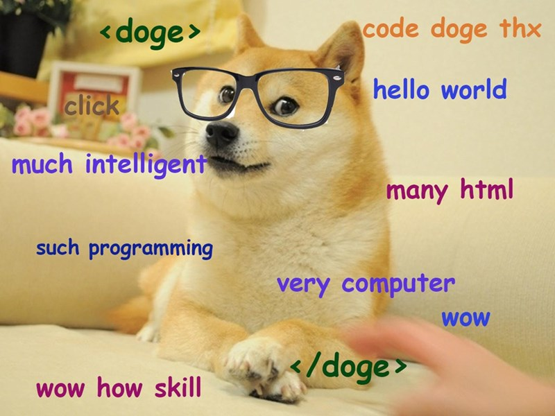 Mammal - <doge> code doge thx hello world click much intelligent many html uch programming very computer WOW </doge woW how skill