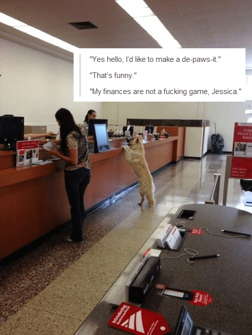 """Job - """"Yes hello, I'd like to make a de-paws-it."""" """"That's funny."""" """"My finances are not a fucking game, Jessica."""" Greas Home La Rats A"""