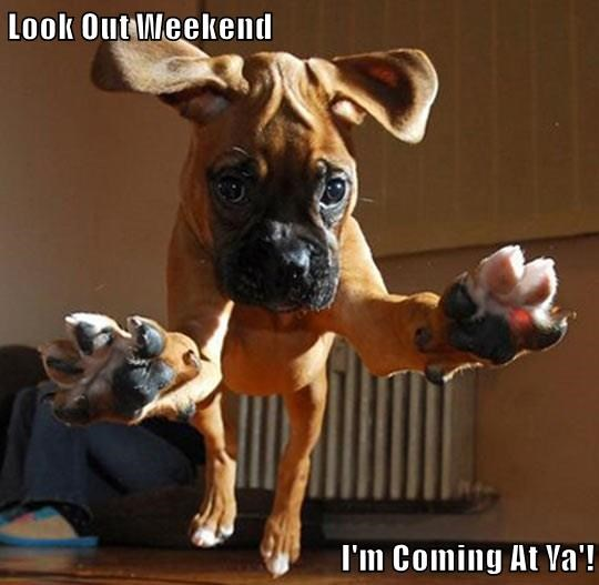 Look Out Weekend  I'm Coming At Ya'!