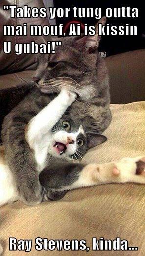 """""""Takes yor tung outta mai mouf, Ai is kissin U gubai!""""  Ray Stevens, kinda..."""