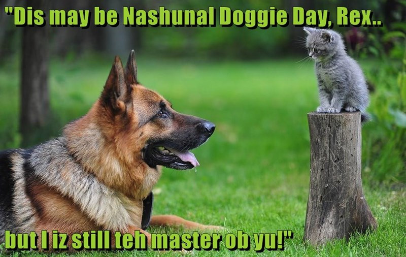 """Dis may be Nashunal Doggie Day, Rex..  but I iz still teh master ob yu!"""