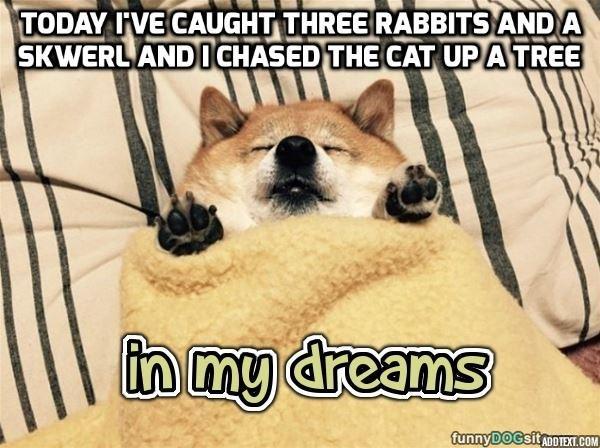 In His Dreams