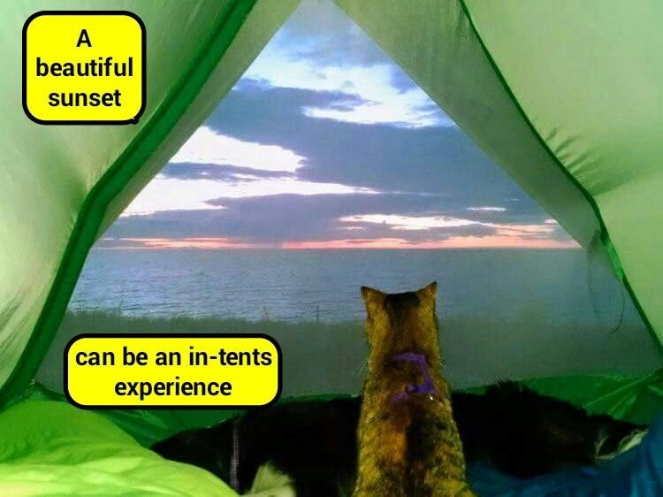 Sunsets can be in tents (recaption: http://tinyurl.com/j8gmlsp