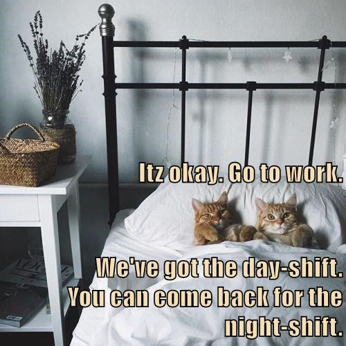 We can also do double-shifts