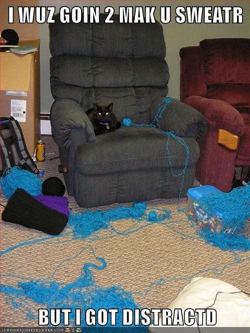 black cat sitting on armchair surrounded by loose blue wool on floor