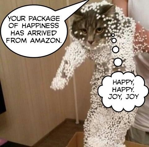 Cat jumps into fresh box from Amazon and gets all the little Styrofoam peanuts stuck to his fur because of the static.