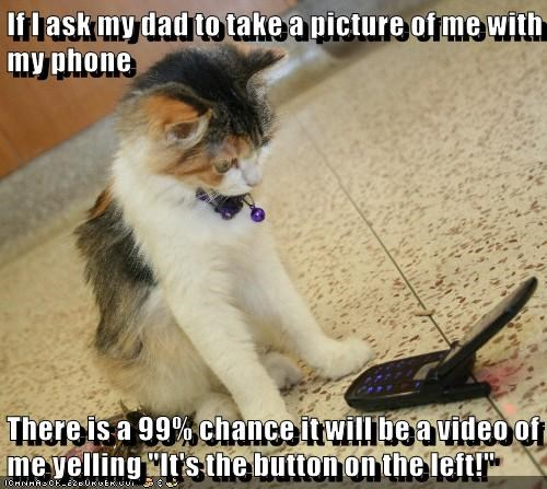 left button kitten take yelling ask dad picture caption Video - 8972929792