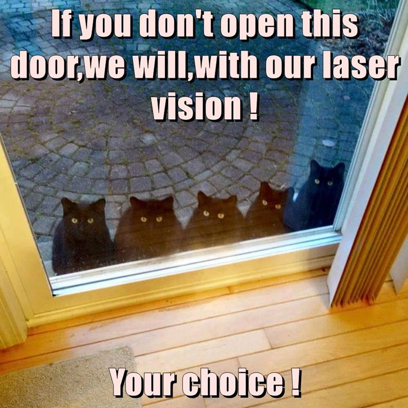 If you don't open this door,we will,with our laser vision ! Your choice !