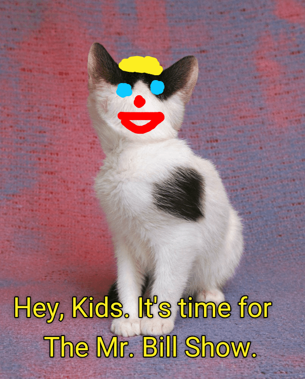 time kids kitten mr bill show caption