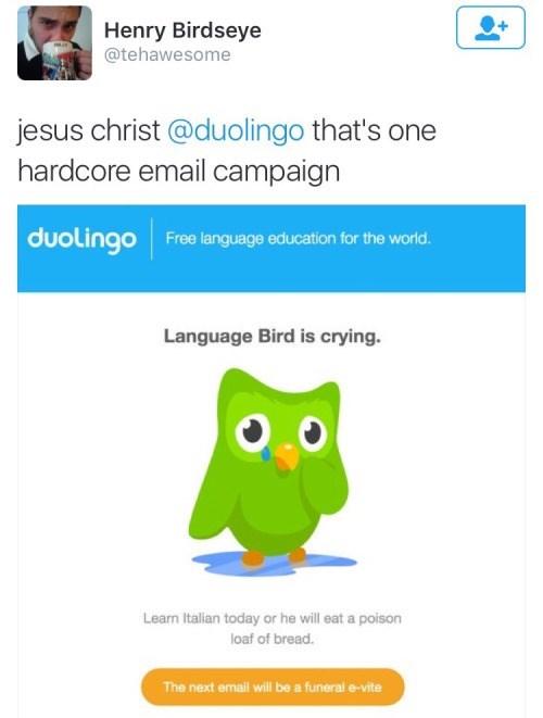image language ads Language is IMPORTANT to Language Bird