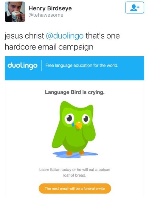 image language ads Language is IMPORTANT to Language Bird