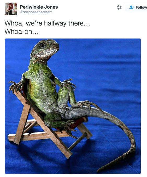 bon jovi meme - Dinosaur - Periwinkle Jones @peachesanscream Follow Whoa, we're halfway there... Whoa-oh...