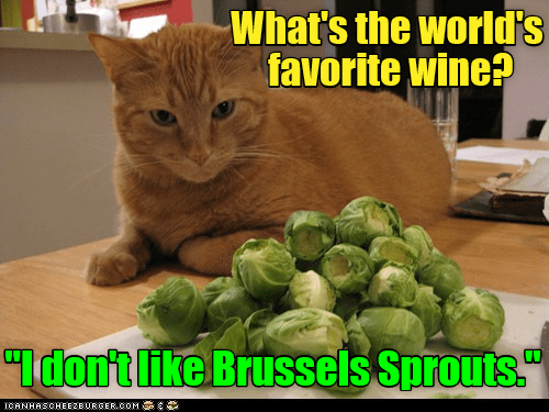 """lolcats - Brussels sprout - What's the world's favorite wine? """"Idon'tlike Brussels Sprouts."""" ICANHASCHEEZBURGER.COM E"""