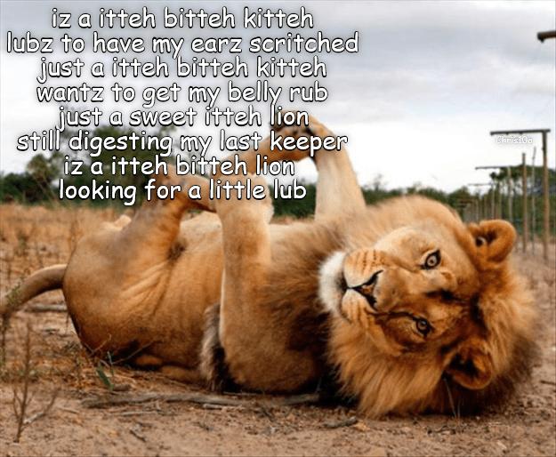Itteh Bitteh Lion