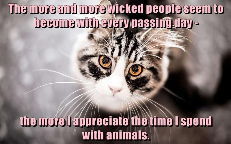 The more and more wicked people seem to become with every passing day - the more I appreciate the time I spend with animals.