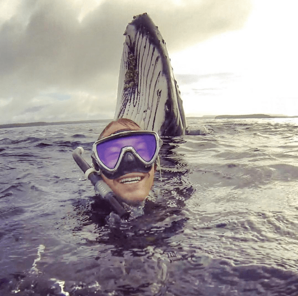 try not to be jealous of this dude who got photobombed by a whale
