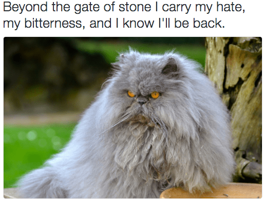 metal cat - Cat - Beyond the gate of stone I carry my hate, my bitterness, and I know I'll be back
