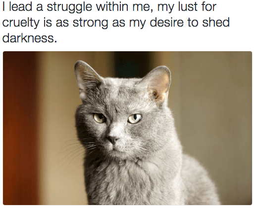 metal cat - Cat - I lead a struggle within me, my lust for cruelty is as strong as my desire to shed darkness