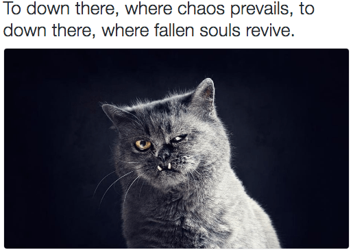 metal cat - Cat - To down there, where chaos prevails, to down there, where fallen souls revive.