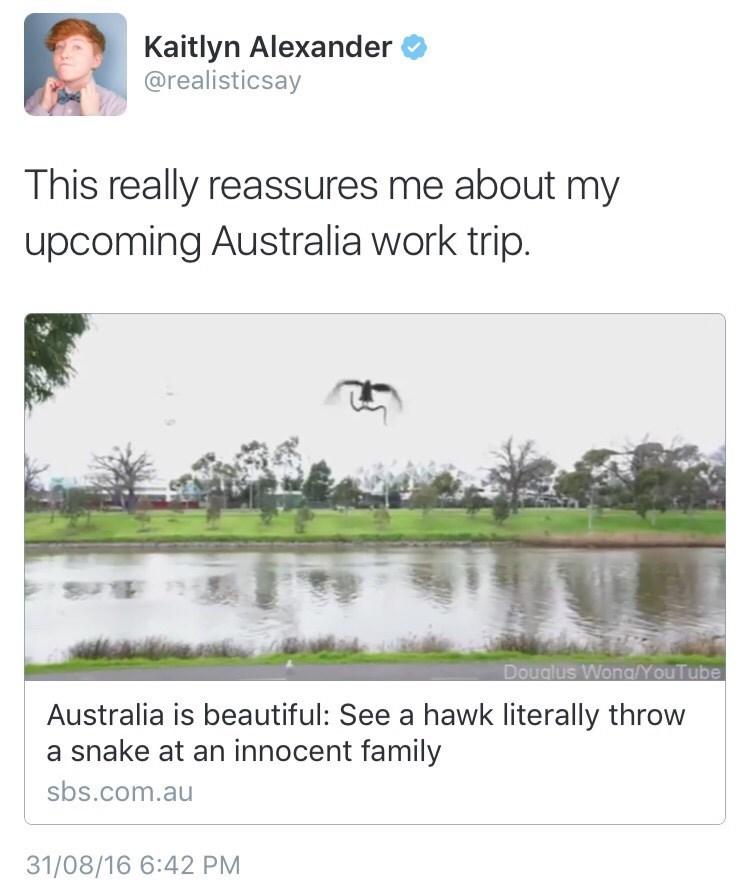 twitter,australia