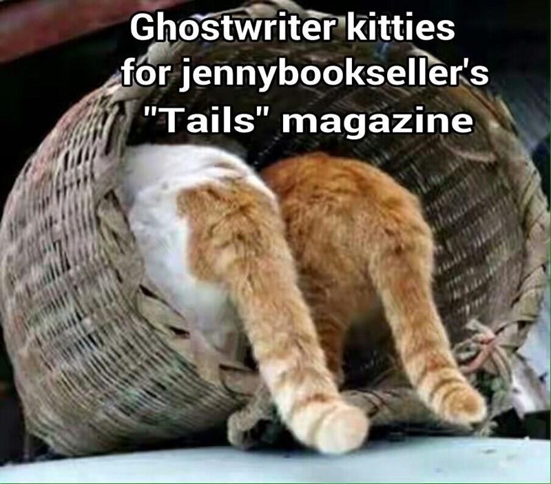"Ghostwriter kitties for jennybookseller's ""Tails"" magazine   (recaption: http://tinyurl.com/jqypxjh"